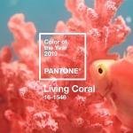 https://impala.hu/wp-content/uploads/2019/01/living-corall-150x150.jpg